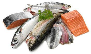 Jual Ikan Laut Marlin Depok -